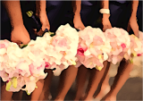 bridesmaids edited